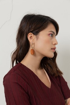 Wood Density Earrings
